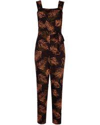Dorothy Perkins Dp Tall Black Tropical Print Jumpsuit - Multicolor
