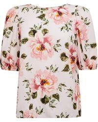 Dorothy Perkins Blush Floral Print Puff Sleeve Top - Pink