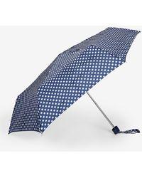 Dorothy Perkins Navy Spotted Umbrella - Blue