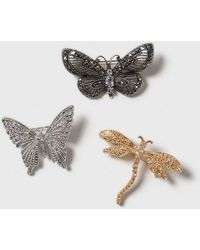 Dorothy Perkins - Butterfly Brooch Pack - Lyst