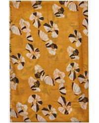 Dorothy Perkins Yellow Flower Print Scarf - Orange