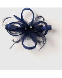 Dorothy Perkins Navy And Black Fascinator Clip, Navy - Blue
