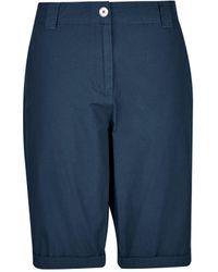 Dorothy Perkins Navy Knee Shorts, Navy - Blue