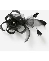 Dorothy Perkins Black Pearl Fascinator