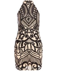 Dorothy Perkins Quiz Cream Turtle Neck Bodycon Dress, Cream - Black