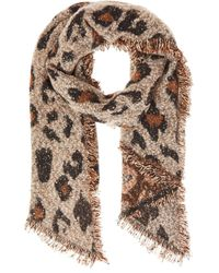 Dorothy Perkins Quiz Brown Leopard Print Sequin Knit Scarf