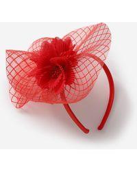 Dorothy Perkins Red Crinkle Fascinator