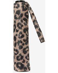 Dorothy Perkins - Taupe Leopard Print Umbrella - Lyst