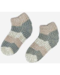 Dorothy Perkins Multi Colour Knitted Trainer Socks - Multicolour