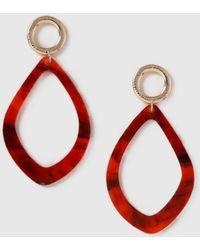 Dorothy Perkins - Teardrop Earrings - Lyst