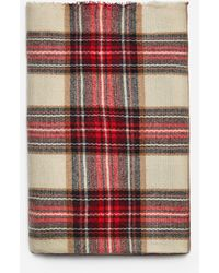 Dorothy Perkins Multi Color Nikka Long Scarf - Red