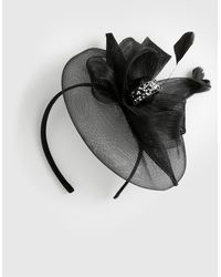 Dorothy Perkins Black Loop Fascinator, Black