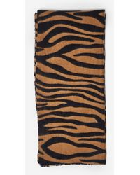 Dorothy Perkins Brown Tiger Print Scarf, Brown