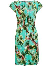 Dorothy Perkins Jade Tropical Print Knot Dress - Green