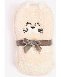 Dorothy Perkins - Pink Popcorn Cat Shammy Socks - Lyst