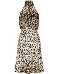 Dorothy Perkins Vesper Multi Color Cheetah Print Bodycon Dress - Multicolor