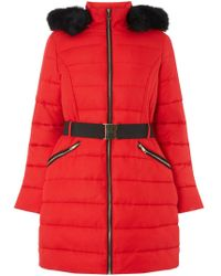 Dorothy Perkins - Red Jacquard Padded Coat - Lyst