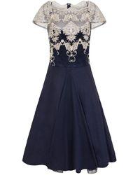 Dorothy Perkins Chi Chi London Navy Cap Sleeve Tea Dress, Navy - Blue