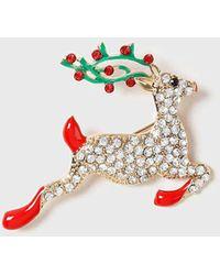 Dorothy Perkins Gold Christmas Reindeer Brooch - Multicolor