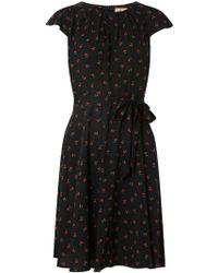 86a3a0e222466 Dorothy Perkins - Billie   Blossom Petite Black Cherry Printed Dress - Lyst