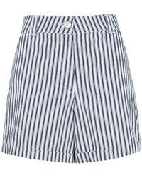 Dorothy Perkins Navy Stripe Print Shorts - Blue