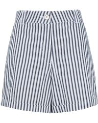 Dorothy Perkins Navy Stripe Print Shorts - Blue