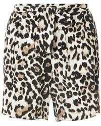 Dorothy Perkins - Leopard Print Shorts - Lyst