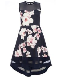 Dorothy Perkins - Quiz Navy And Pink Dip Hem Fit And Flare Dress - Lyst