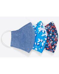 Draper James Face Mask 3-pack In Spring Floral - Blue