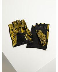 Roeckl Sports Lederhandschuhe - Gelb