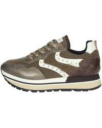 Nero Giardini Sneakers donna bronzo - Marron