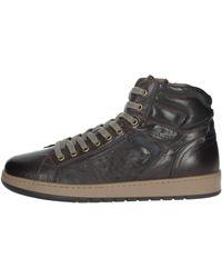 Nero Giardini Sneakers - Marrone