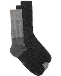 ALDO - Color Block Crew Socks - Lyst