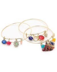 Kelly & Katie Colorful Charm Bracelet Set - Metallic
