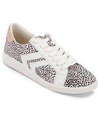 Dolce Vita Neo Arrow Sneaker - White