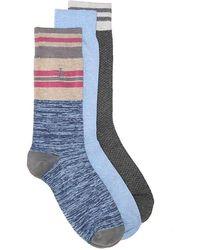 Original Penguin - Combed Cotton Crew Socks - Lyst