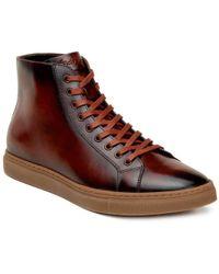 Belvedere Sneakers for Men - Lyst.com