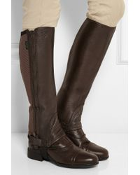 Ariat Breeze Elasticated Grained-leather Chaps - Lyst