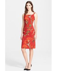 Dolce & Gabbana Carnation Print Cady Sheath Dress - Lyst