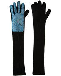 Christopher Kane Navy Long Snakeskin Gloves - Blue