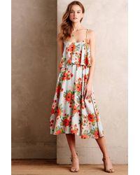 Paper Crown - Poppy Field Dress - Lyst