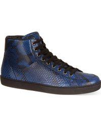 Gucci Brooklyn Exotic High Tops Blue - Lyst
