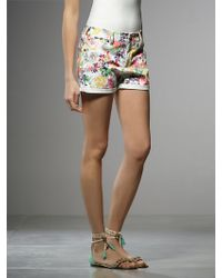 Patrizia Pepe Shorts in Printed Cotton Stretch Fabric - Lyst