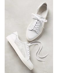 Anthropologie - Pointed Punch Sneakers - Lyst