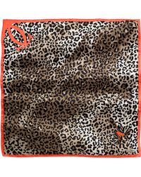 Cartier Panther and Butterfly Motif Scarf - Lyst