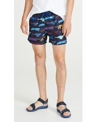 PS by Paul Smith - Large Cheetah Swim Trunks - Lyst
