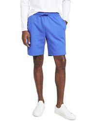 Lacoste Shorts - Blue