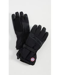 Canada Goose Norther Liner Gloves - Black