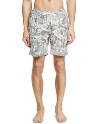 Onia Charles 7 Birds Of Paradise Swim Trunks - Multicolour