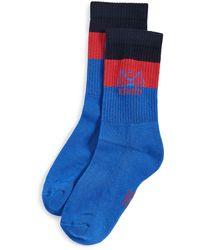 KENZO Stripy Tiger Socks - Blue